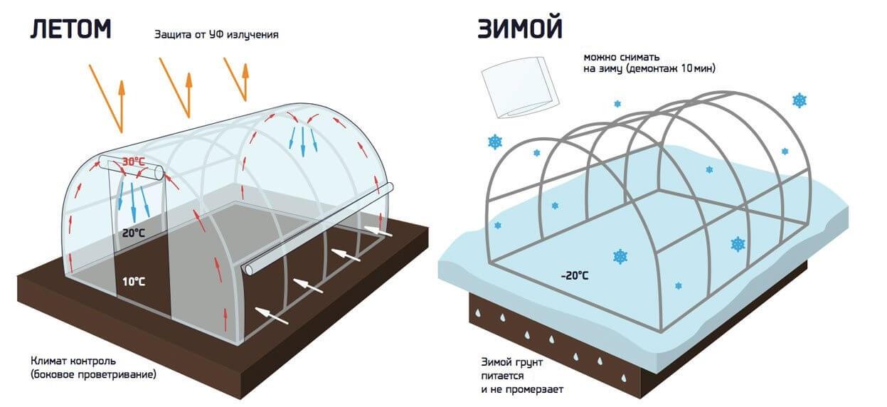 Что лучше для строительства теплицы на даче: армированная пленка или пленка Светлица?